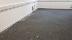 The Before picture of the office carpet
